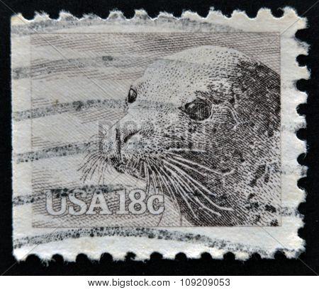 UNITED STATES OF AMERICA - CIRCA 1981: A stamp printed in USA shows sea lion circa 1981