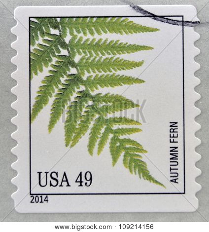 A stamp printed in USA dedicated to Ferns shows autumn fern circa 2014