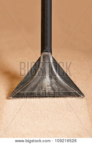 Professionally Cleaning Carpets