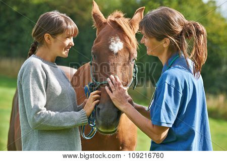 Female Vet Examining Horse In Field With Owner