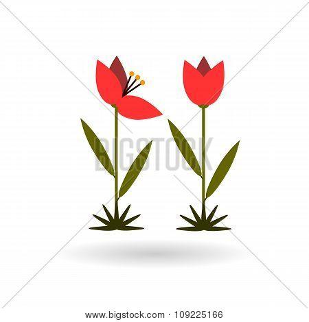 Tulip Color Flat Icon