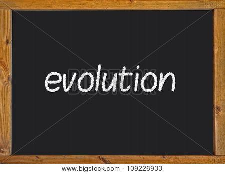 Evolution written on a blackboard
