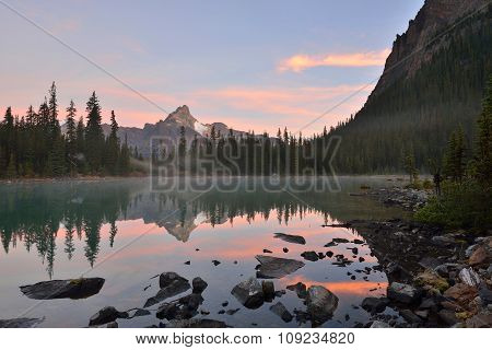 Lake O'hara And Cathedral Mountain At Sunrise