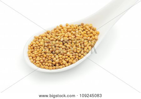 Mustard Seeds In A White Ceramic Spoon