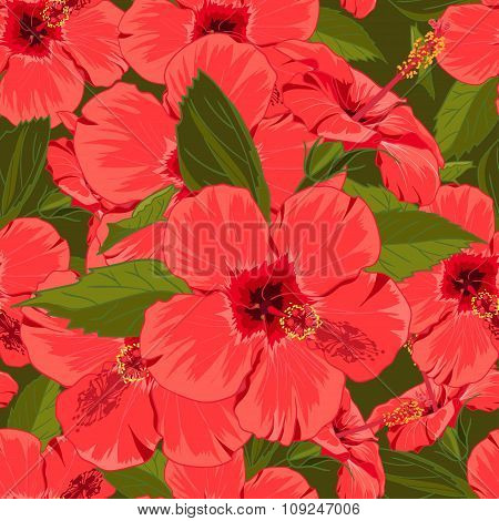 Seamless floral red hibiscus background  in realistic hand-drawn style.