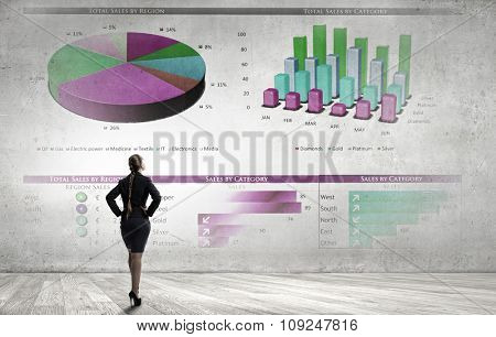 Rear view of businesswoman looking at infographs on wall