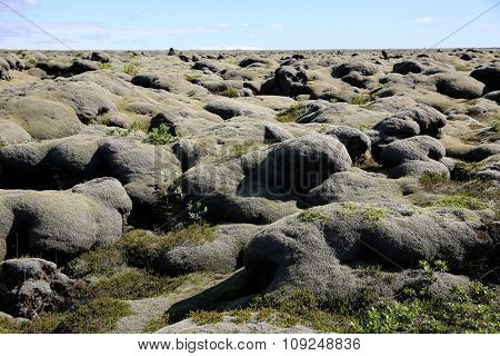 Lava Plain