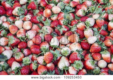 White And Red Strawberries