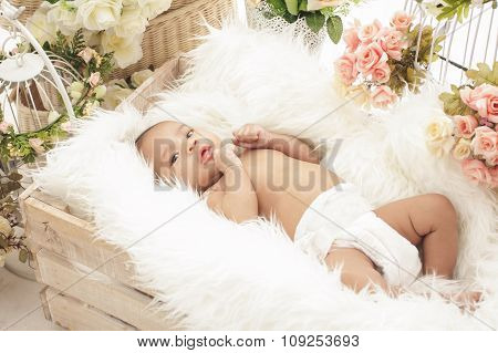 Pretty Baby Girl In Box With Fur Blanket And Flowers Around