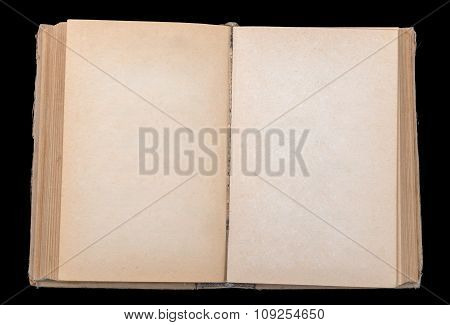 Open book with blank leaves