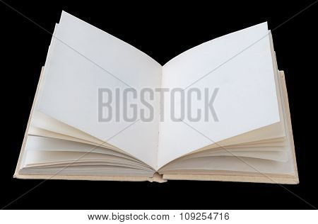 Open book with empty leaves