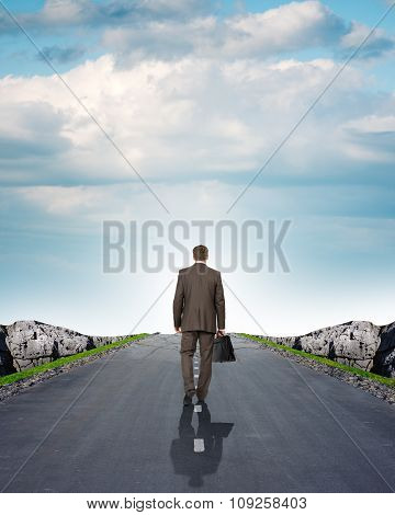 Businessman on road with mountains, rear view