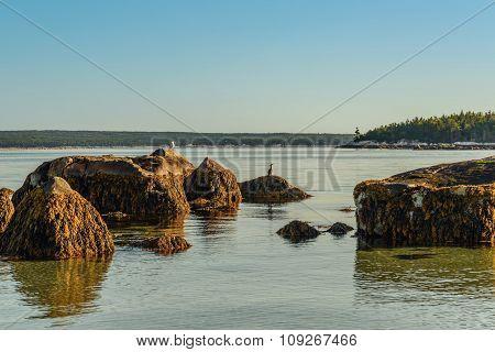 Carters Beach (Carters Beach, Nova Scotia, Canada)