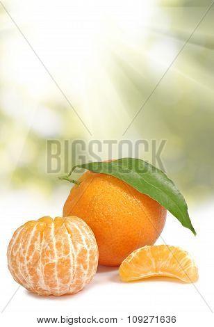 Image Of Orange On Sunlight Background  Closeup