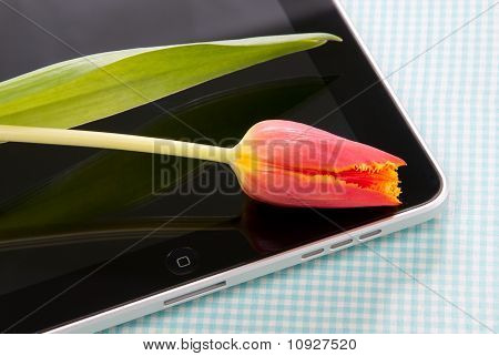 Tablet Touch With Tulip