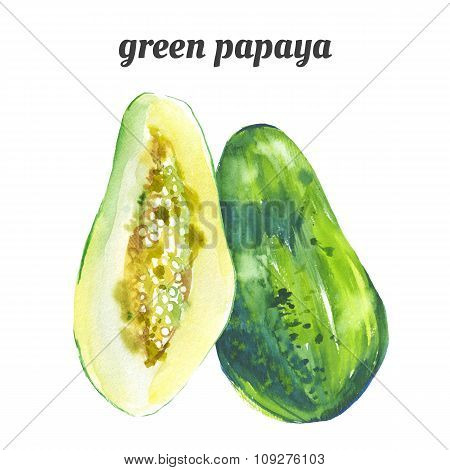 Watercolor green papaya. Fresh organic food.