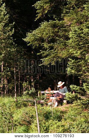 Woman on a bench reading. Woman reading  book in nature