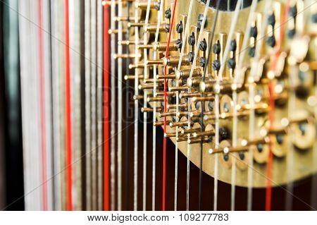 Harp strings. Classic music concept