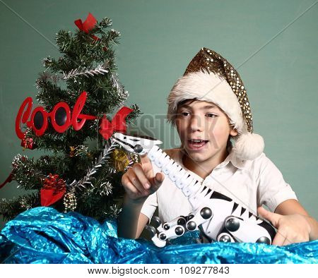boy with christmas tree and present smiling