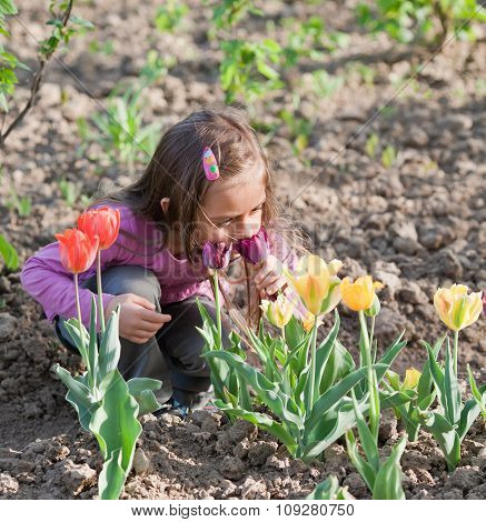 Little Girl With Tulips