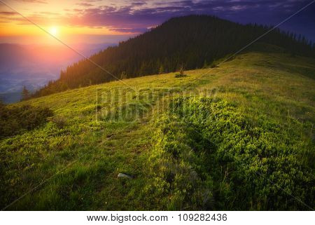 Fantastic summits glowing by sunlight. Dramatic and picturesque morning scene. Location Carpathian, Ukraine, Europe. Beauty world. Instagram effect. Warm toning.