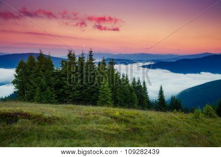 Fantastic foggy mountains glowing by sunlight. Dramatic and picturesque morning scene. Location Carpathian, Ukraine, Europe. Beauty world. Instagram toning. Warm toning effect.