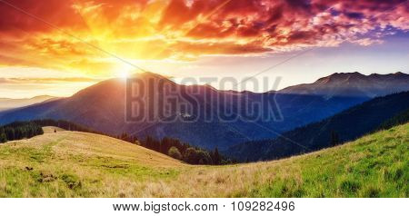 Fantastic mountains glowing by sunlight. Dark overcast sky in the morning. Dramatic and picturesque scene. Location Carpathian, Ukraine, Europe. Beauty world. Instagram toning. Warm toning effect.