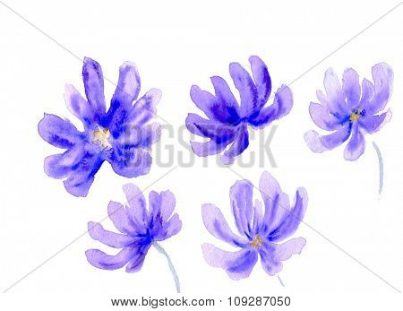 A set of watercolor flower shapes in blue colors