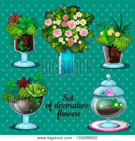Collection of bouquets in decorative glass vases