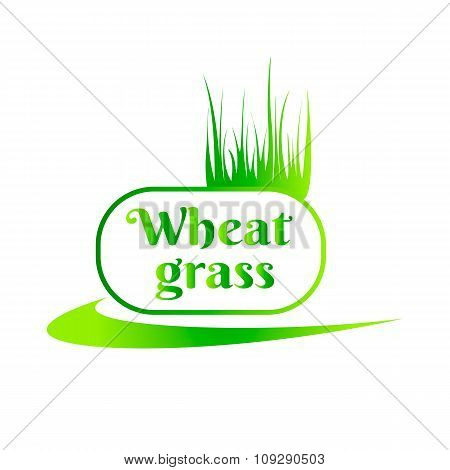Wheat grass green juice. Logo, banner, frame for business, the store site for clean super food or pa