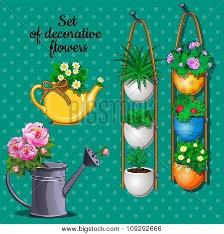 Ornamental plants set, hanging pots, watering can and vase