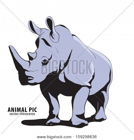 Illustration of rino on white background