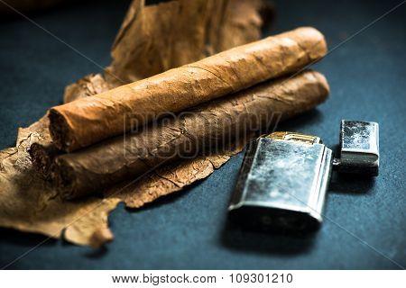 Cuban Cigars On Tobacco Leafs