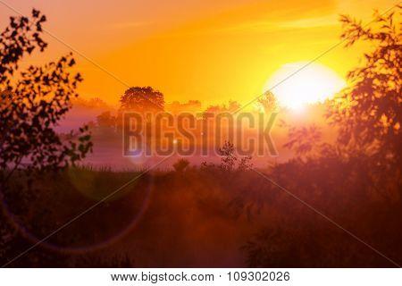 Rural landscapes at sunrise