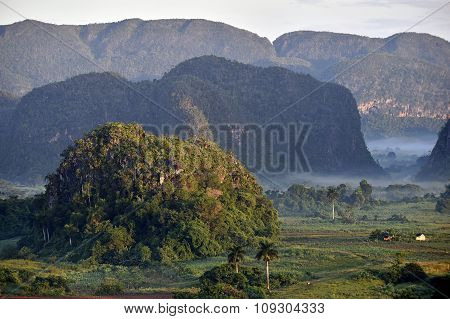 Fog At Dawn In The Valley Of Vinales