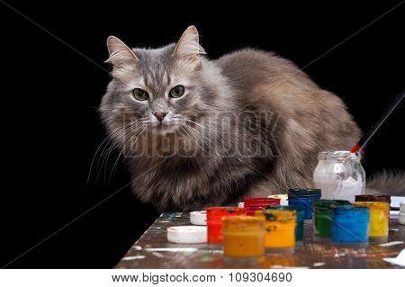 Cat artist.