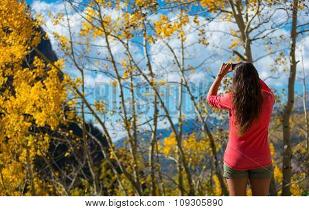 Woman Taking Picture Of Aspen Tree, Sunny Autumn Day Colorado