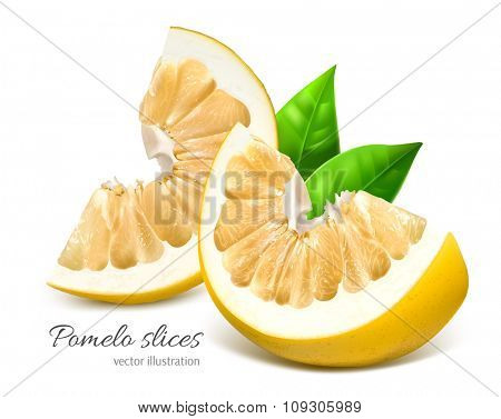 Pomelo slices with green leaves. Vector illustration