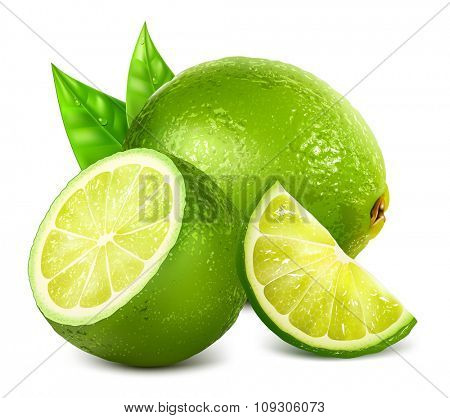 Fresh limes and lime slice with leaves. Vector illustration
