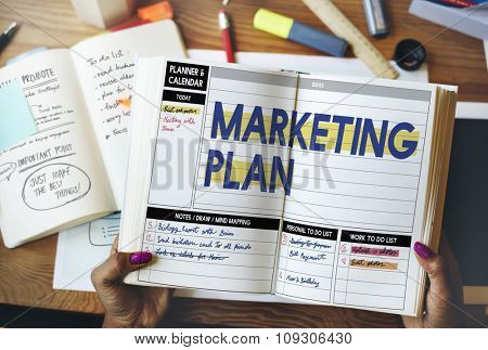 Marketing Plan Strategy Tactics Guidelines Concept