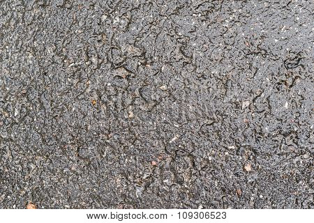 Brilliant Surface Asphalt Of Speckled Color