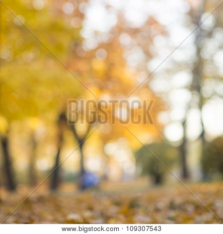 Autumn abstract blurred background with a magic lights, out of focus golden lights