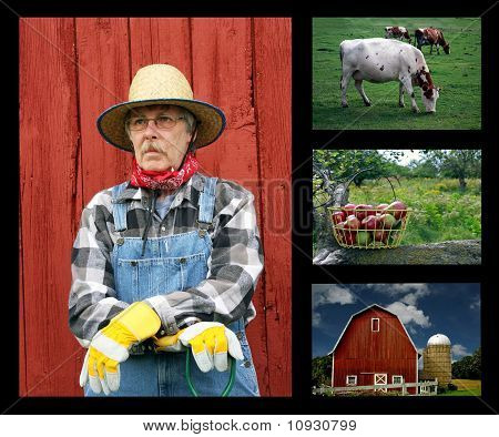 Farming Collage