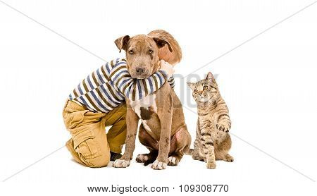 Boy, pit bull puppy and cat sitting together