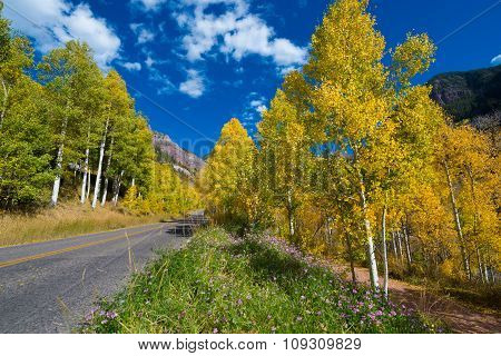 E Highway 145 Spur Telluride Colorado Fall Colors