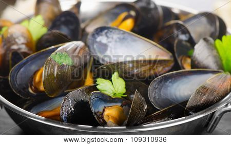 Boiled Mussels In Cooking Dish