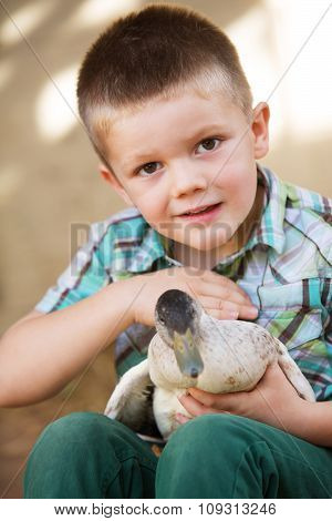 Little Boy Petting Duck