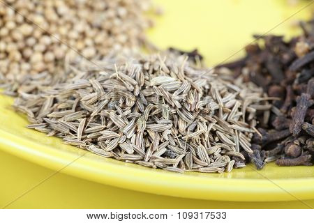 Mixed spice - coriander, anise seeds, cloves on plate