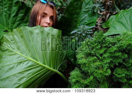 Portrait of a young girl stays behind a big leaf
