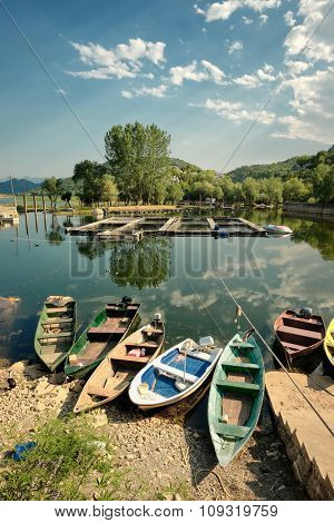 row boats on Karuc bay in Lake Skadar National Park, Montenegro